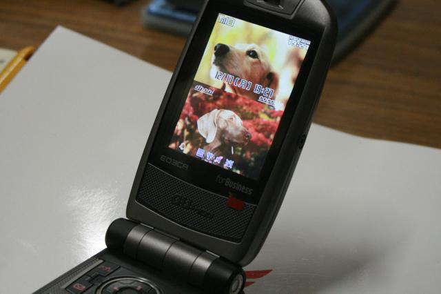 2007121701jpg